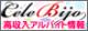 関西・大阪風俗求人 高収入アルバイト情報 セレビジョ